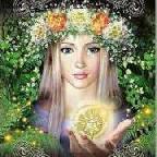 хризантема аватар