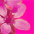 mira27 аватар